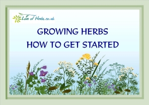 Growing Herbs free ebook