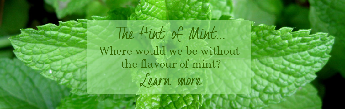 Love-Of-Herbs_Hint-of-Mint