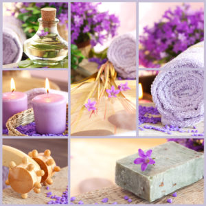 Lavender oil is a healer of mind body and spirit.